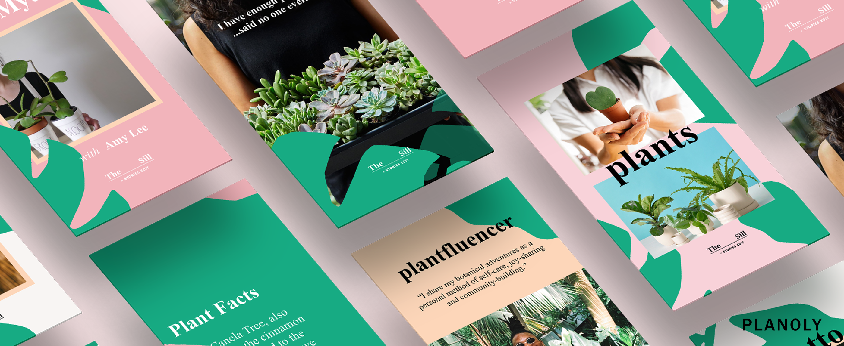 The Sill x StoriesEdit Template Collection